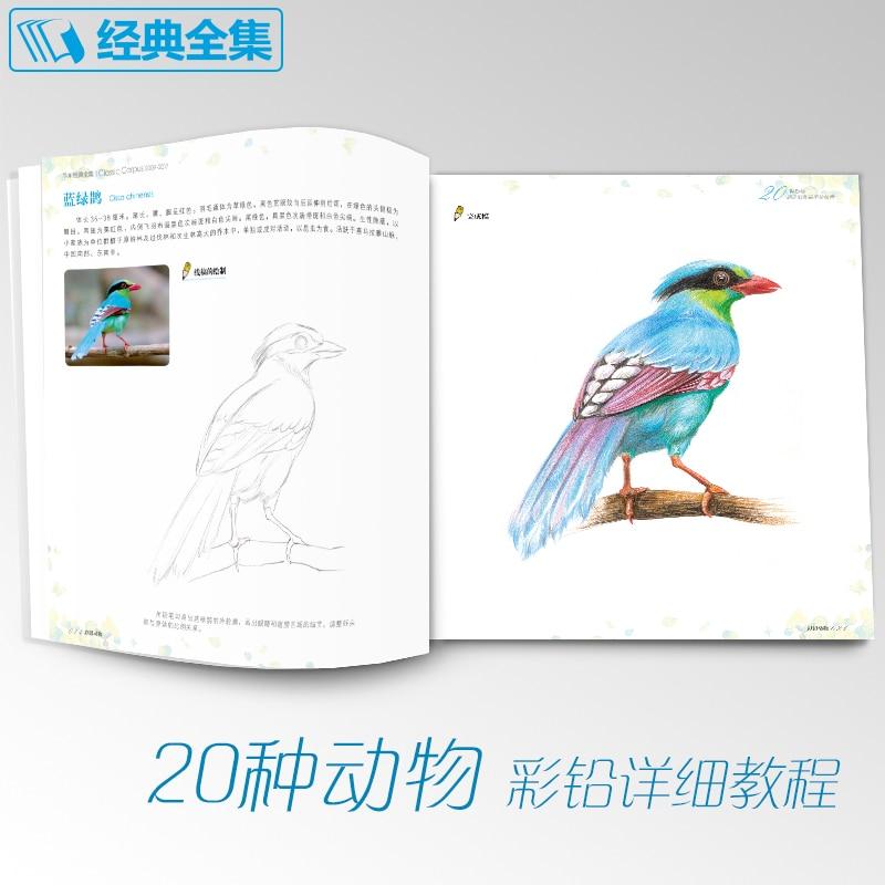 esboço Animal livro tutorial conhecimentos básicos para iniciantes