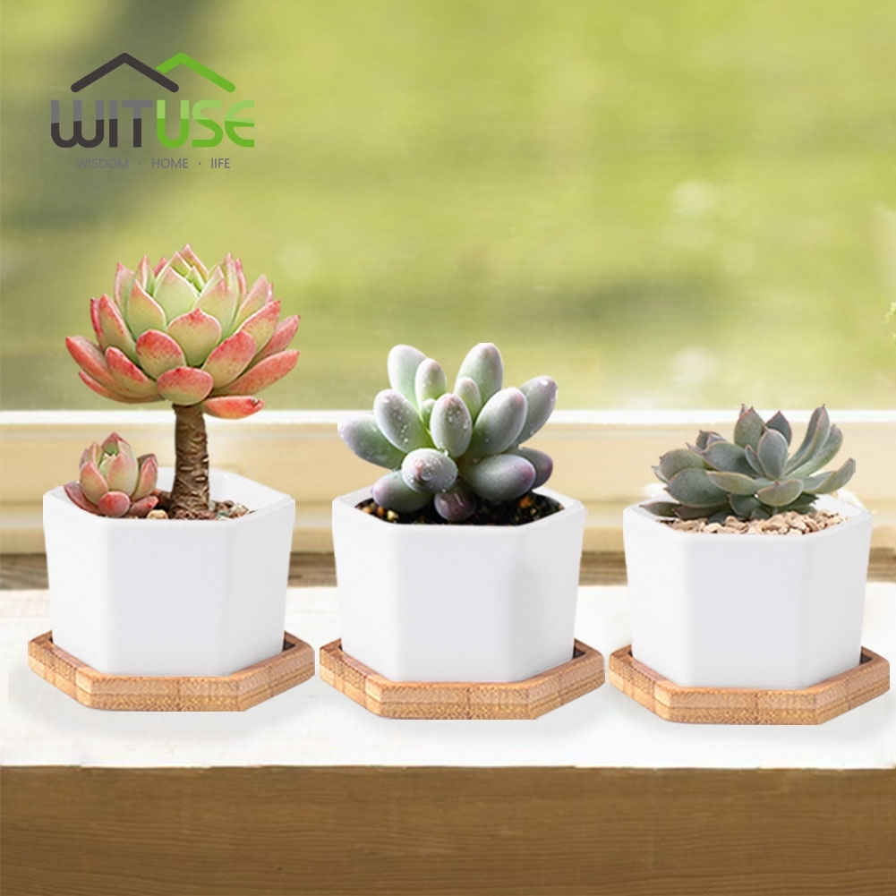 WITUSE Glazed Geometry White Ceramic Succulent Plant Pot Bonsai ...