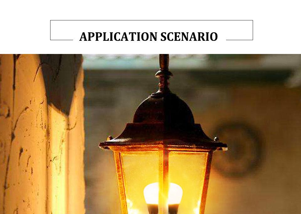 LED PIR Sensor Bulb E27 15W AC 220V 110V Dusk To Dawn Light Bulb Day Night Light Motion Sensor Lamp For Home Garage Lighting (13)
