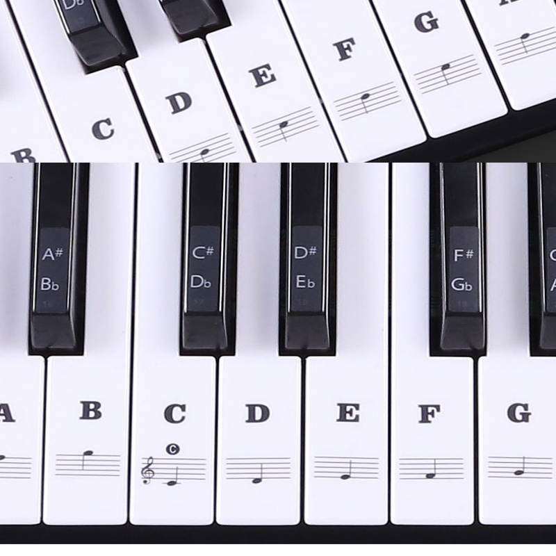 Piano Sticker Transparent Piano Keyboard Sticker 37/49/54 Key Electronic Keyboard 88 Key Piano Stave Note Sticker for White Keys