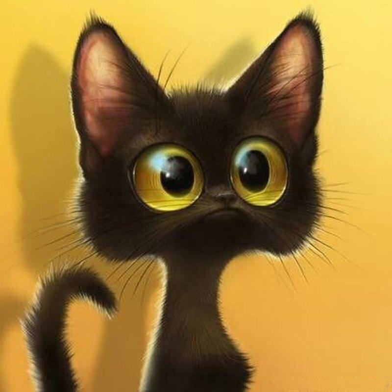 Сто черный кот