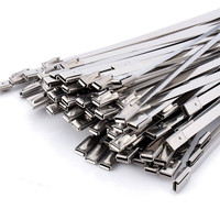 100pcs High Quality Stainless Steel Self Locking Cable Ties For Ship Electricity 300x4 6mm