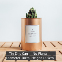 Tin Zinc Can DIY Planter Flower Pot Pen Holder Organizer Storage Rustic Cacti Tall Champagne