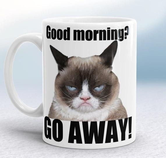 Grumpy cat mugs coffee mug ceramic white mugs printed novelty porcelain beer tea cups home decal kitchen drinkware cat lady cup
