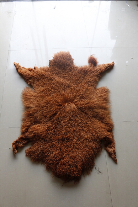 Curly hair mogolian sheep lamb fur skin of light brown color and dark brown color ...