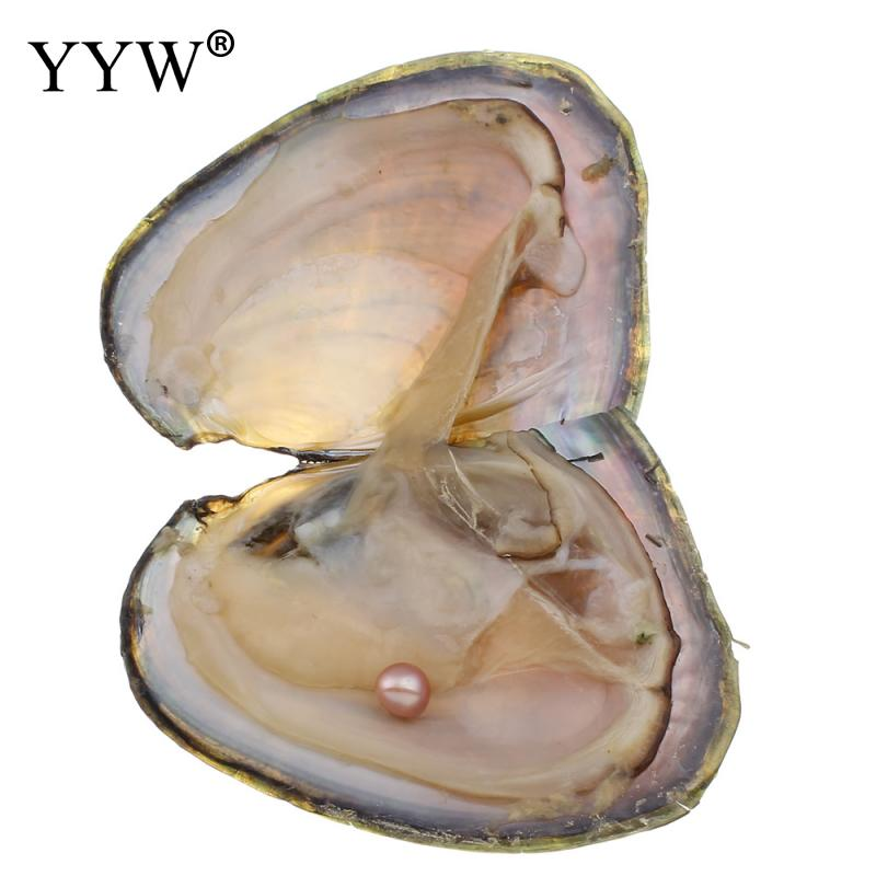 Freshwater Vacuum-pack Oyster Wish Pearls, Natural Pearl Mussel Shell with 6-7 mm Oval Pearl Inside 1 pcs