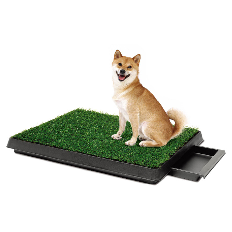 New 2017 Pet Potty Puppy Dog Toilet Training Mat Patch Absorbent Grass Pad Indoor Park Litter Tray Doggie Restroom in Dog Accessories from Home Garden