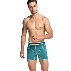 Male underwear cotton boxer homme de marque spot boxers camouflage men s underwear wear leg lengthening.jpg 250x250