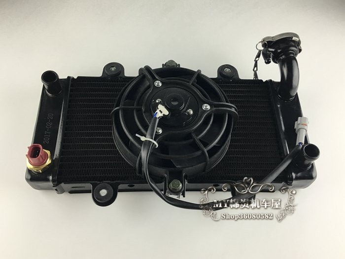 Motorcycle RADIATOR cooling fan GT 250cc 350cc water tank accessories free shipping