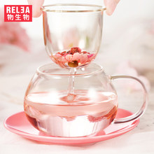 Heat Resistant Clear Glass Tea Jug Glass Borosilicate Teapot With Strainer Tea pot Cute Mushroom Tea jug Chinese Teapot