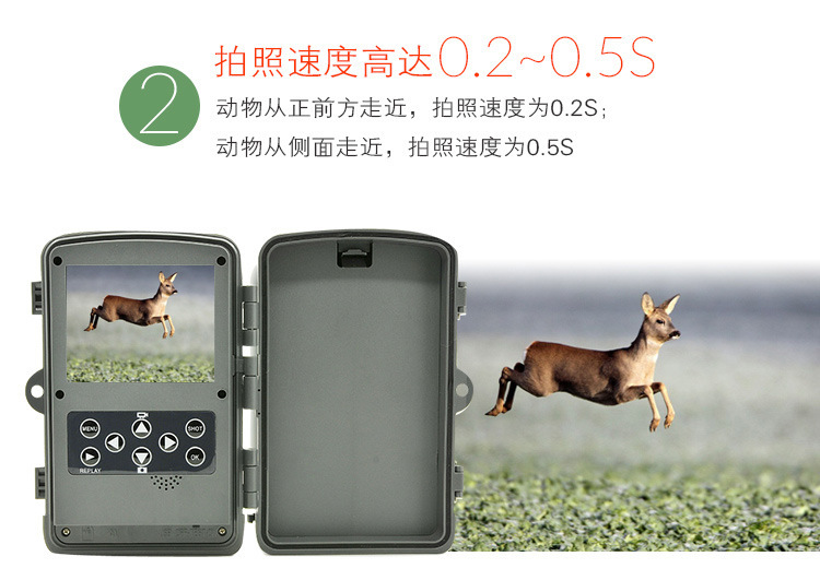 DHL Free Ship Quality Wildlife Hunting Camera 12MP HD Digital Infrared Scouting Trail Camera 940nm IR LED Night Vision Video 940nm scouting hunting camera 16mp 1080p new hd digital infrared trail camera 2 inch lcd ir hunter cam