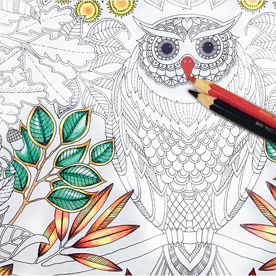 [4Y4A] 4pcs/Lot Secret Garden Series Antistress Coloring Book For Children Adults Graffiti Painting Drawing Art Book