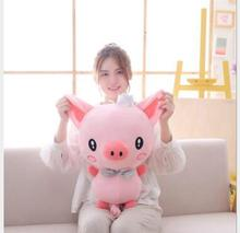 WYZHY Cute Spring Festival Gift Pig Mascot Crown Doll Plush Toy Nap pillow cushion 50cm