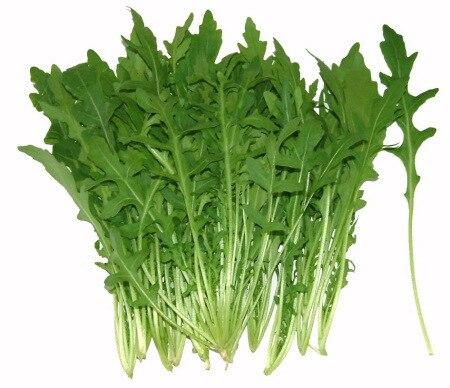 Горячая листовки органические руккола семена овощной 100 семян