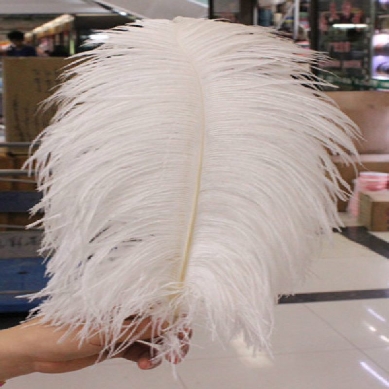Wholesale!100pcs 25-30cm/10-12inch  White  Ostrich Plumes Feather Cheap Feathers Ostrich Feather Wedding Table Decoration