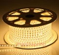 5M  3528 SMD LED  Waterproof 2W/M 220V 60LEDs/M 300 LED Strip With Red/Blue/Yellow/Purple/White + Controler