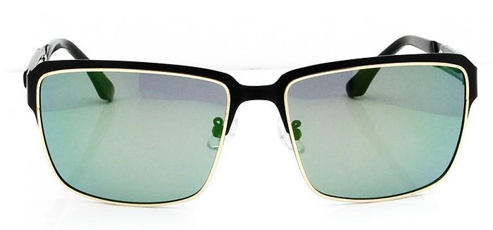 Polarized Sunglasses (4)