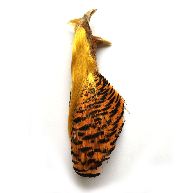 Natural Complete Golden Pheasant Head and Crest Fly Fishing Fly Tying Feather Material бумажник golden head портмоне 3331501