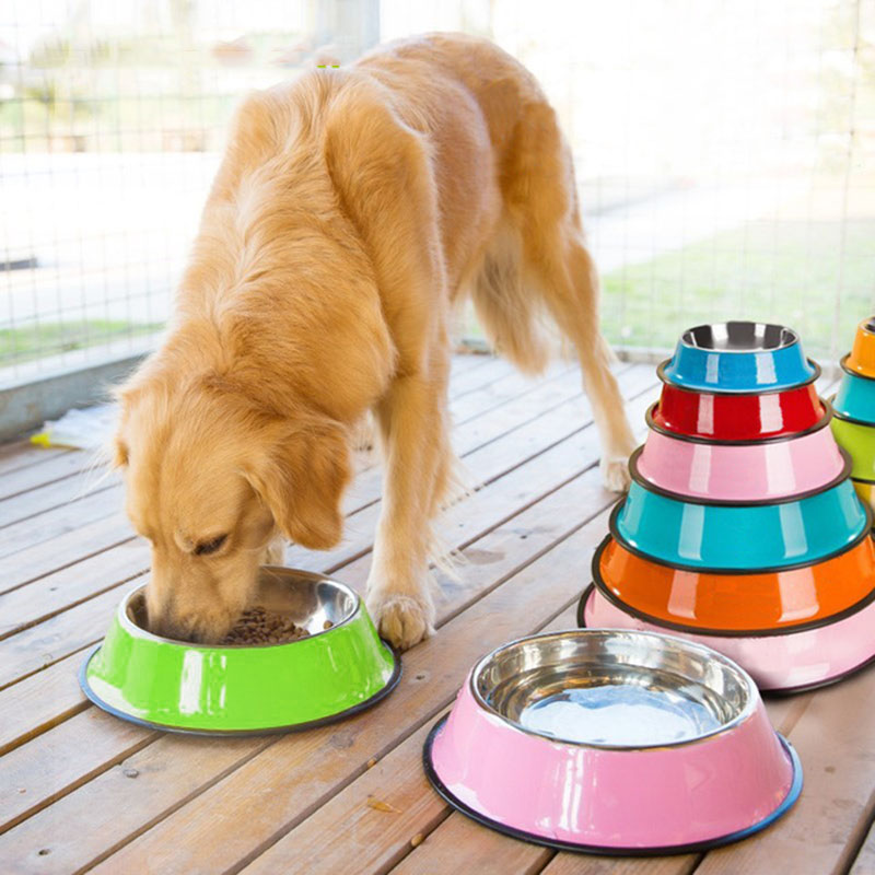 4-Size-Stainless-Steel-Color-Spray-Paint-Pet-Dog-Bowls-Puppy-Cats-Food-Drink-Water-Feeder.jpg_640x640