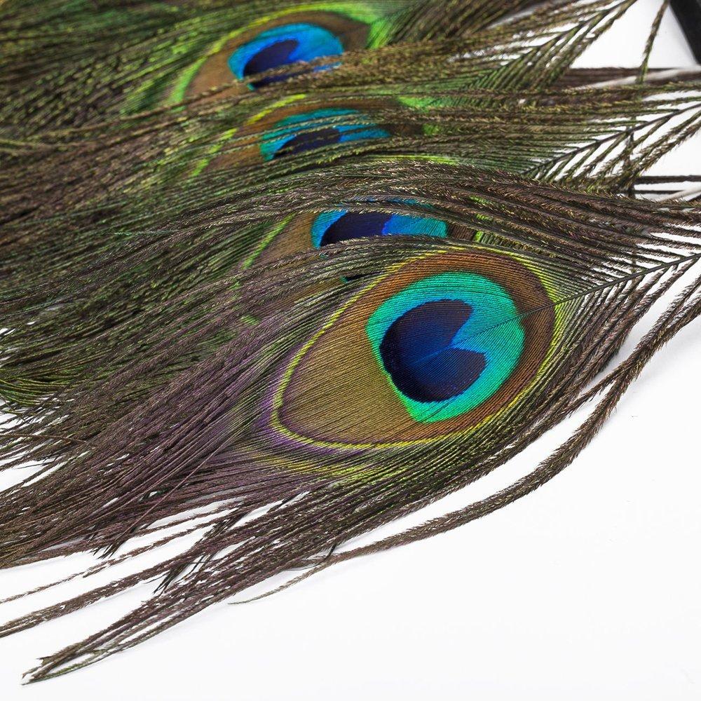Venta al por mayor 10 metros plumas de pavo real Natural adornos alrededor de 15CM de ancho flecos con cinta de satén costura artesanías decoración de disfraces-in Pluma from Hogar y Mascotas    3