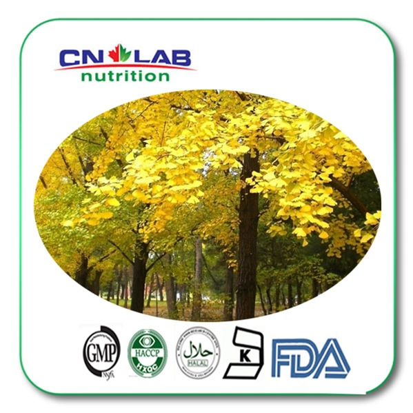High quality for 24% flavone ginkgo biloba extract powder 200g chinese new harvest hawthorn extract hawthorn berry extract flavone 600g