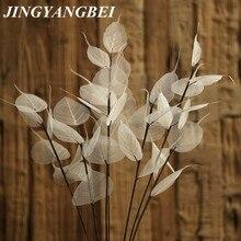 55 см натуральный белый лист Бодхи ветка сушеный цветок свадебный цветок сухой цветок консервированный цветок украшение дома