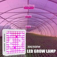 Garden LED Grow Light Lamp 300/600W Full Spectrum Red/Blue/White/UV/IR For Indoor Plants Greenhouses Plants Home Flowers