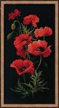 سوزن دوزی ، DIY صلیب بخیه ، مجموعه برای کیت گلدوزی ، 11CT و 14CT ، خشخاش قرمز