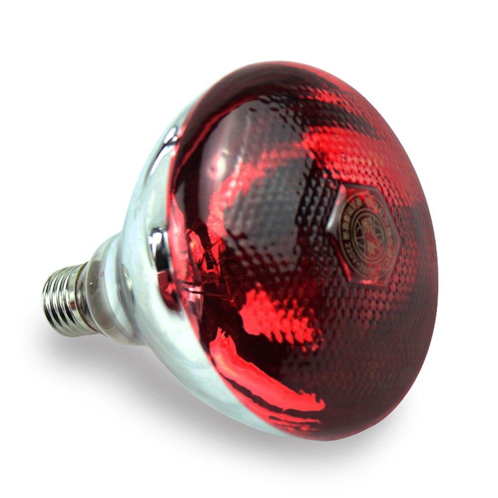 Food Warmer Light Bulbs