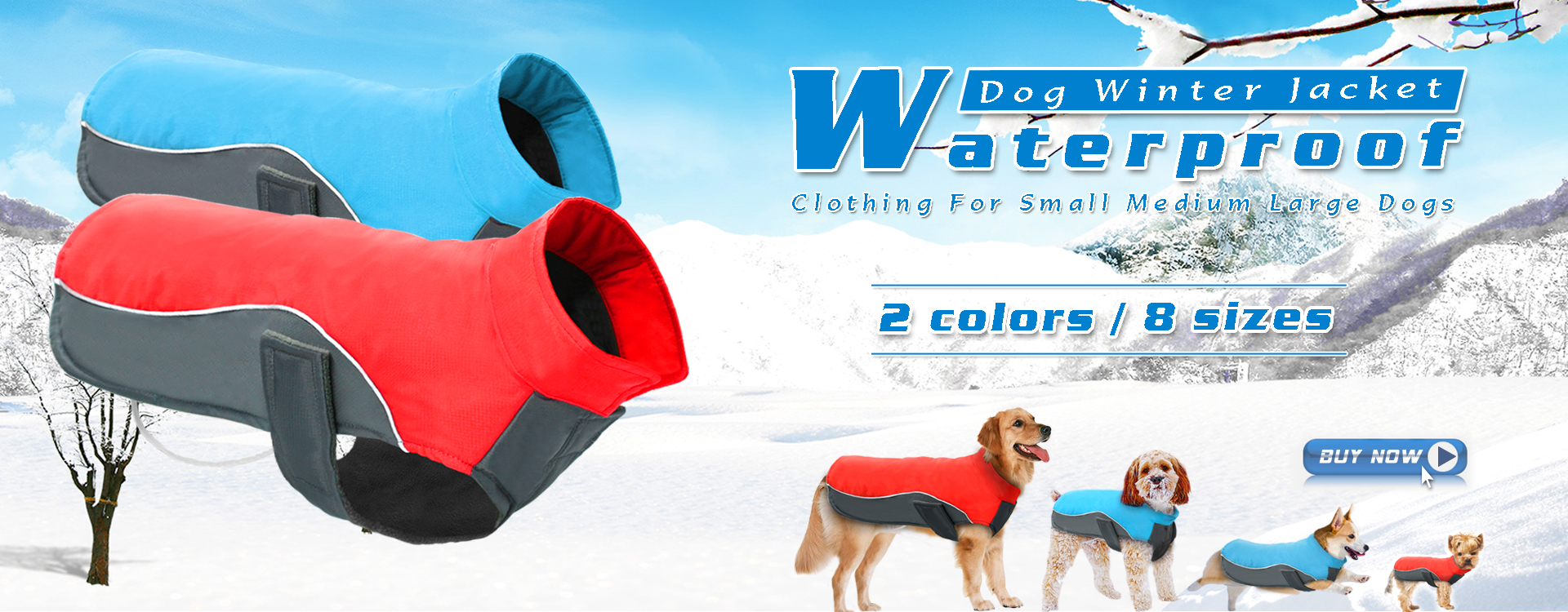 What pet products can you buy online? 81