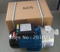 Джет самовсасывающий струйный насос и BJZ75/t Бытовая чистой питьевой воды насос, для среднего домашнего/сад