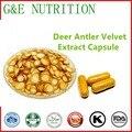 Chifre de Veado Veludo Extrato 10:1 Pó Cápsulas de 500 mg * 100 cápsulas (Cornu Cervi) Navio Livre