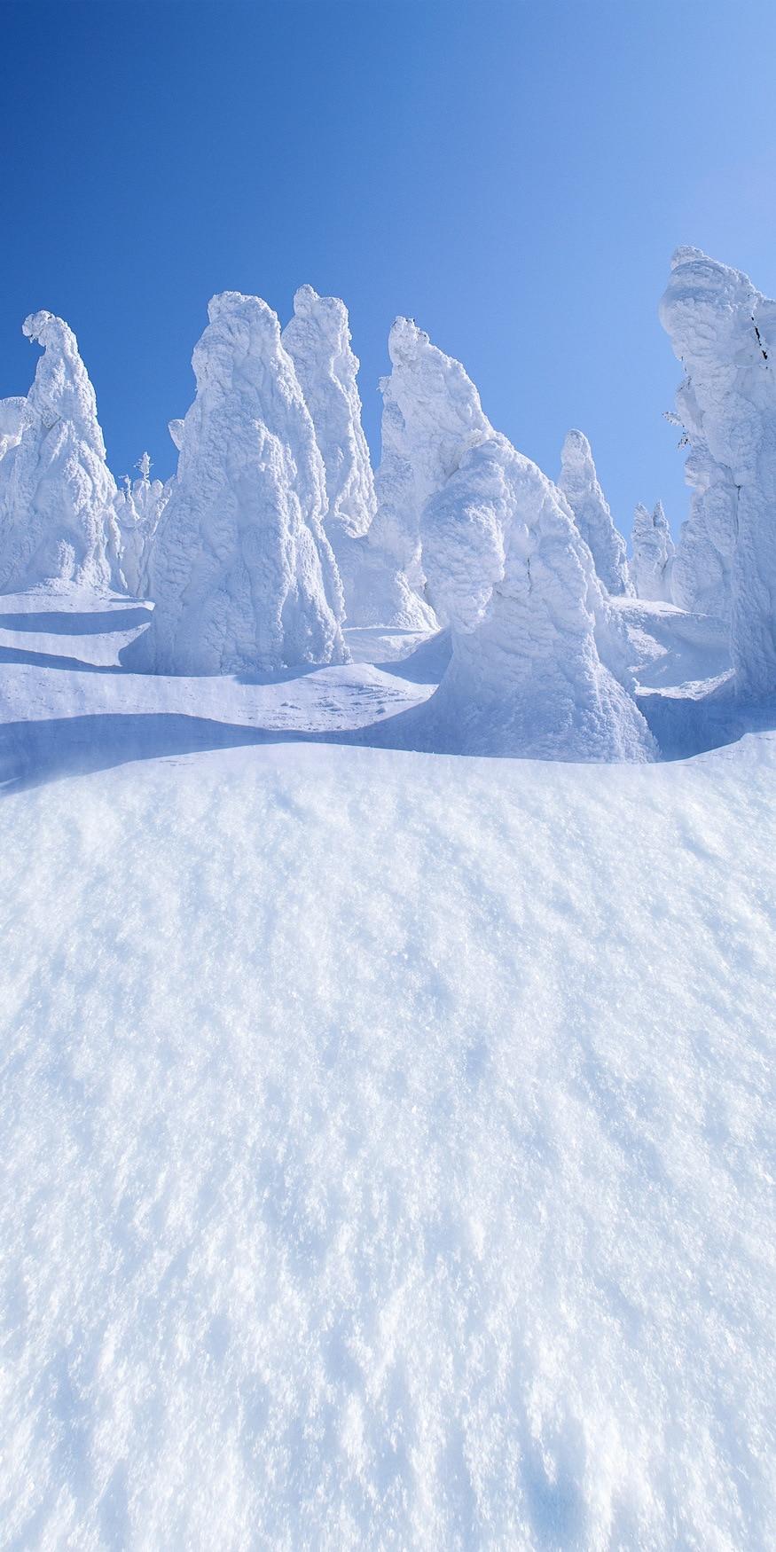 LIFE MAGIC BOX Snow 150x200cm Vlastní foto kulisy Usa Pozadí zimní kulisy pro fotografii J02732