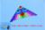O envio gratuito de alta qualidade ganso selvagem pássaro pipa com alça paraglider pipa linha de pipa nylon ripstop pipa fábrica windsockjuliet