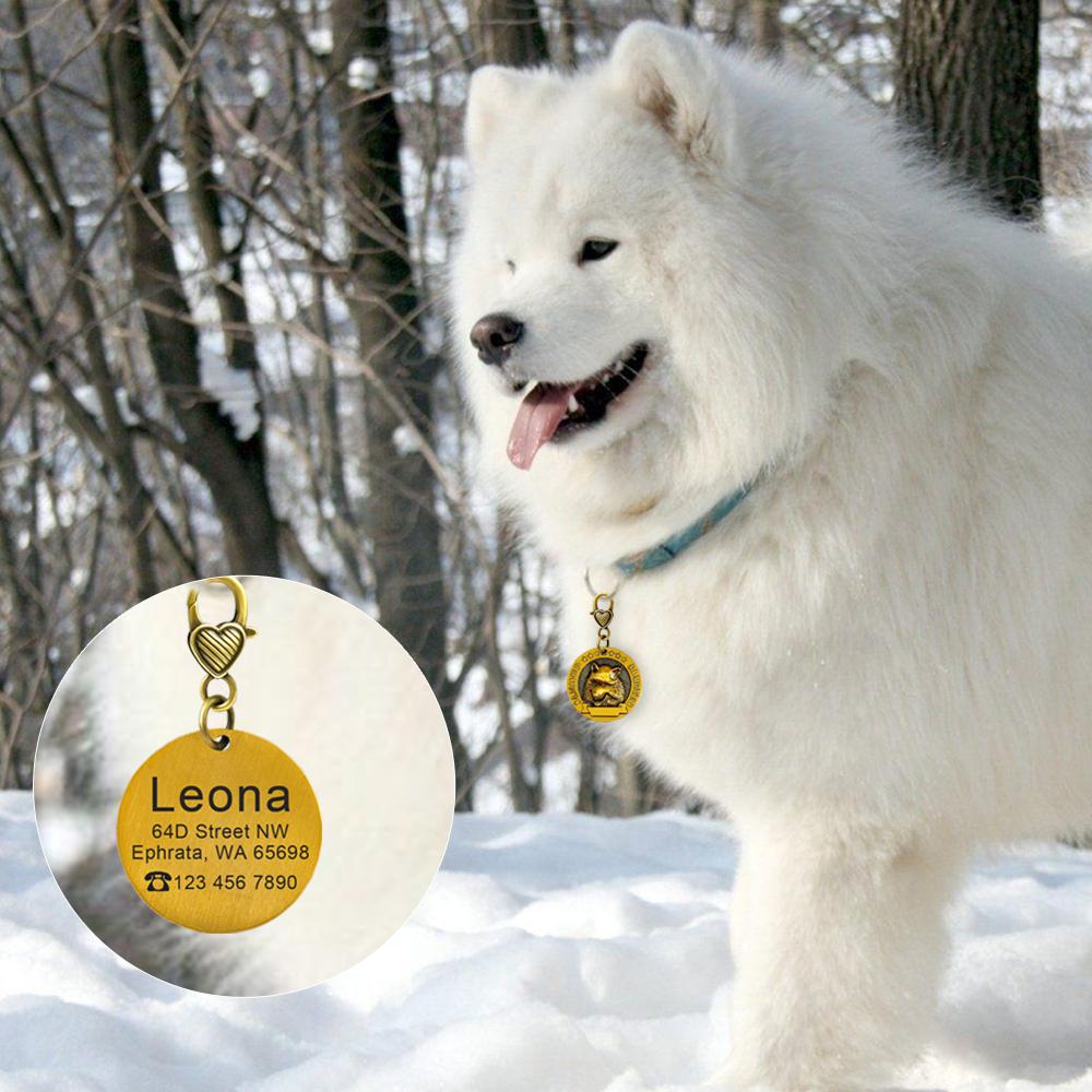 Placa de identificación de perro personalizada 10