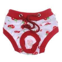 Menstrual Hygiene Pants