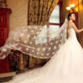 2015 New Fashion Handmade Lace 3 Meters Embroidered Bridal Veil Long Trailing Formal Wedding Accessories