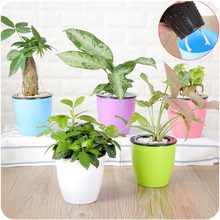 Home Plant Flower Pots Plastic Starting Two-Tone Universal Soft Flowers Nursery Seeds Storage Container Garden Decoration