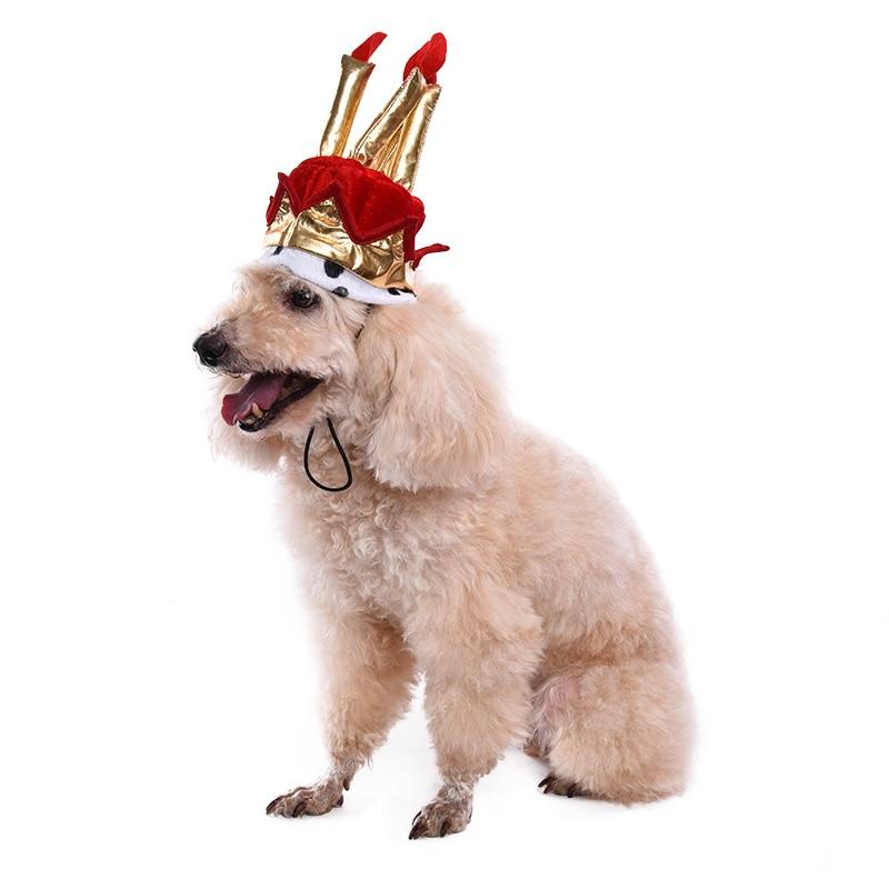 Hond Verjaardag Hoed Verjaardag Levert Taart Model Hoed Voor Pet
