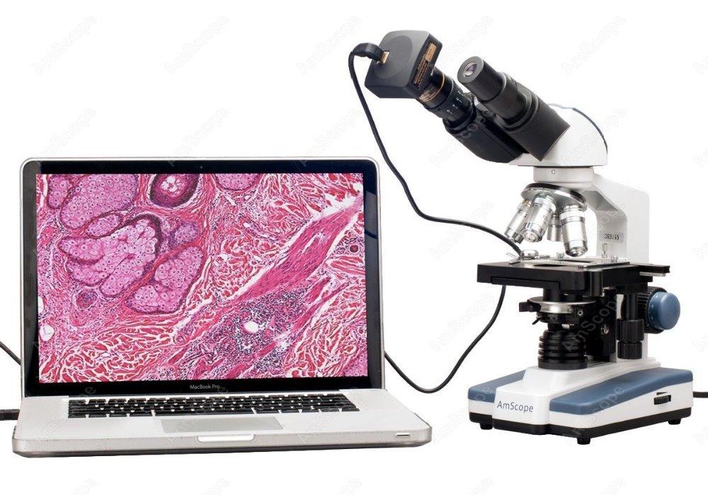 Microscopio composto binoculare - AmScope fornisce il microscopio composto digitale binoculare LED 40X-2000X con palco 3D e fotocamera da 3 MP