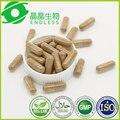 5 lotes 500 mg * 60 cápsulas Cordyceps sinensis extract/cordyceps sinensis cápsula/cordyceps polissacarídeo de 20%