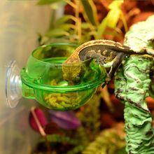 Рептилия анти-побега еда чаша чашка Черепаха Ящерица червь живой пищевой контейнер