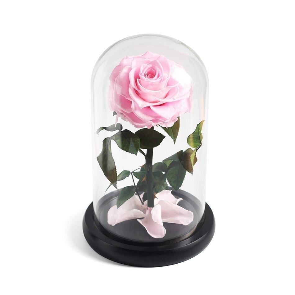 Красавица и Чудовище красная роза в стеклянном куполе на розовой гостиной спальни украшения стола подарки на день Св. Валентина подарки на день рождения - Цвет: pink
