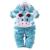 Conjuntos de Roupas de recém-nascidos Conjuntos de Roupas de Bebê Meninos Meninas Primavera Outono Da Criança Do Bebê Animais de Veludo de Manga Longa 2 pcs Set Infantil traje