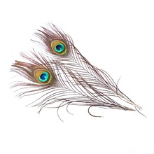 Best Selling 30 Pieces 25-30CM Peacock Feather Eyes 3-4CM Wide Hair Wedding Dress DIY Jewelry Fluffy Pop Decoration