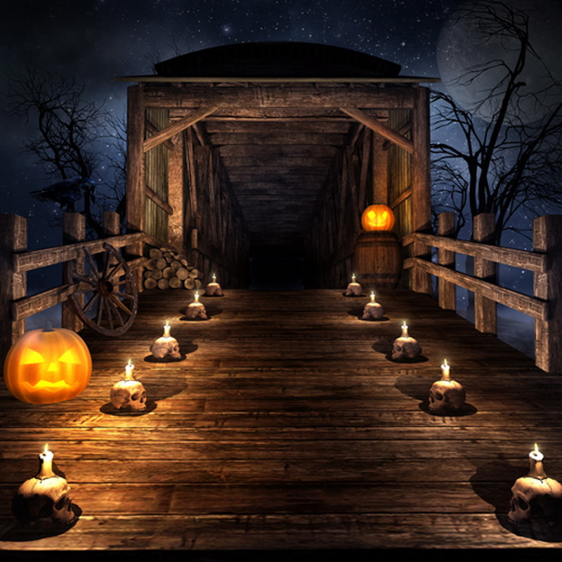 huayi moon night house pumpkin photography halloween backdrop d6906china - Halloween Backdrop