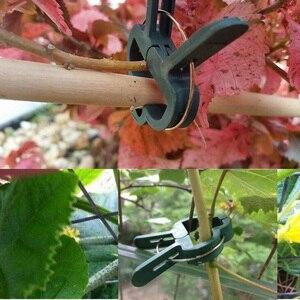 Image 3 - 20Pcs 나무 식물 꽃 모종 줄기 지원 정원 도구 봄 클립 내구성 비바람에 견디는 플라스틱 식물 클립