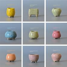 Mini Shaped Succulent Cactus Flower Pot 34 styles