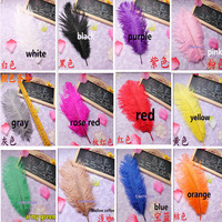 10pcs lot wholesale lovely ostrich feathers ostrich feather 25-30 cm / 10-12 inch feather wedding