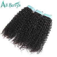 Ali Berrys Hair Kinky Curly Human Hair Brazilian Hair Weave Bundles Double Weft 10 20 Inches